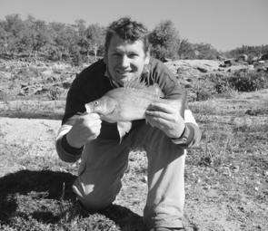 Plenty of golden perch like this have been coming out of Wyangala Dam, especially on bait.