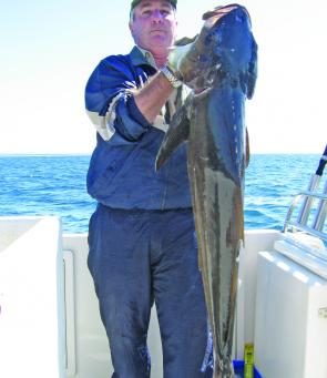 Just before the massive deluge there were plenty of sizable cobia on offer such as this 17kg model caught out on North Reef.