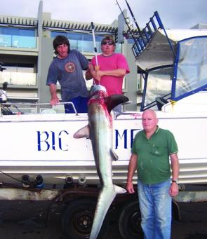 Portland locals Peter Ryan, George Smith and Peter Hill landed this 60kg thresher shark around the North Shore. Many others have earned their freedom at the boat.