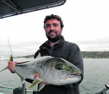 Bryce with a lovely 92cm Pittwater king that couldn't resist a live squid.