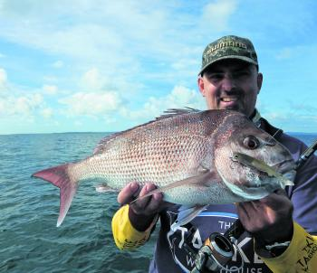 Bay and Brisbane River snapper are responding well to a broad array of techniques including baits and artificials. This one loved the Samaki Thumpertail and was caught on the first cast of the day.