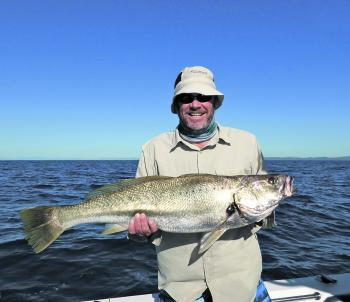 Paul has a cracker SEQ mulloway taken on a jighead rigged plastic.