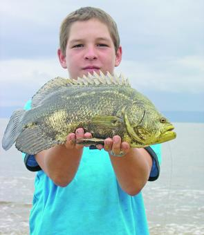Young angler, Curtis Hober, fishes Wonga Beach regularly and was recently rewarded with a rare catch of a smashing jumping cod (or triple tail).