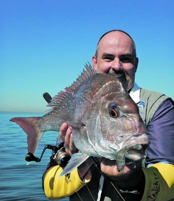As the water temperature increases snapper will become more common around the artificial reefs, bay islands and wrecks within Moreton Bay.