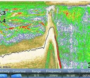 Lowrance sounder shot shows bass holding in against cover where the wind was blowing.