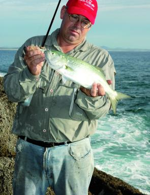 Big whiting invade Wallis Lake from November and popping is the most exciting way to stir them up.