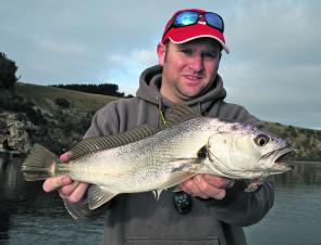 The continued presence of mulloway in the system has definitely added variety to the fishing..