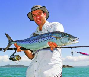 Spotted mackerel can be quite common catches while high speed spinning metals in the Whitsundays.