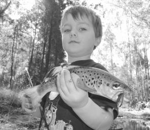 One of many brown trout that Lochie and myself caught in Traralgon Creek on Berkley Power Minnows. Not a bad fish for a three year old!