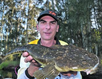 The author with an average lake flathead, which is an ideal size for the pan. A few of these should be on offer at The Entrance and throughout Brisbane Waters this month.