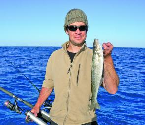 Whiting catches have been excellent off of Robe, Kingston and Cape Jaffa.