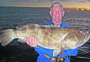 Dave Murray boated this 13kg+ gold-spot cod on a recent trip to Double Island Point.