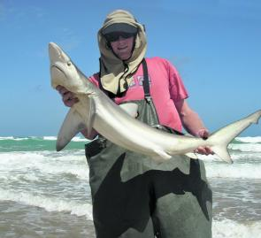 Daniel Murdoch with a typical sized bronzed whaler for Salt Creek.