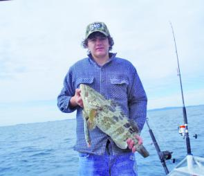 Live baiting is so much fun and can catch good-sized fish like this estuary cod.
