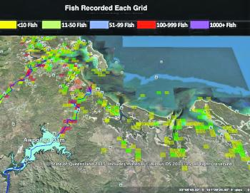 As you can see, a heck of a lot of fish are tagged in the Gladstone region.