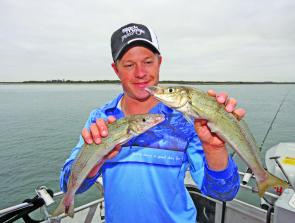 A whiting's slimline profile makes them a brutal fighter for their size.