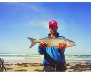 Chris Geddes of Snapper Fridges with a slider caught Poyungan tailor.