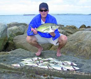 Bream and silver trevally can be targeted throughout the year. This lot was caught by the author and Andrew Humphries in Botany Bay.