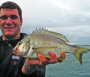 Bream are now worth targeting right across Botany Bay.
