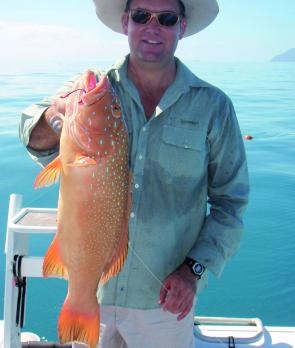 Coral trout have been caught in good numbers this month.