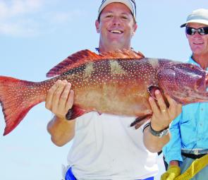 A great catch of coral trout. Dinner is served.
