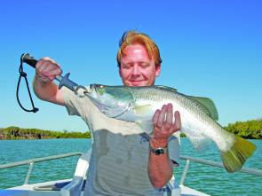 When the roads open and anglers can reach Karumba, fishing live baits along the mangrove edges will connect you with barra and king salmon, plus a host of other tropical tuggers.