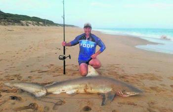 Brad Taylor with a cracking big bronzie caught at Golden Beach on LBG gear using a whole bonito as bait.