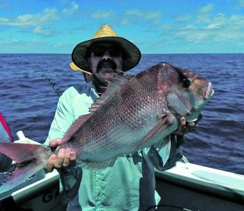 The author with a solid snapper catch. The ever-reliable reds are sticking around.