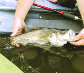 Take care releasing fish – don't just 'chuck 'em back'.