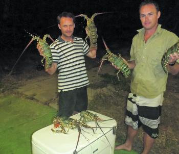 A catch of crays from 3m of water.