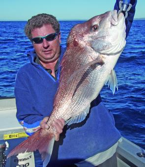Quality snapper will increase in the bay and offshore reefs.