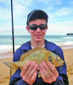 Daniel Scott, 13, with a Collaroy Beach bream.