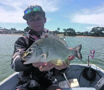 A bream the author got from underneath a boat on an Atomic Crank 38.