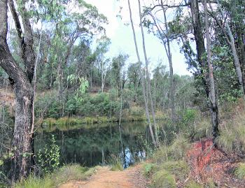Bates Dam is a pretty little lake with a picnic table. It is only a stones throw from the Beechworth-Myrtleford Road.