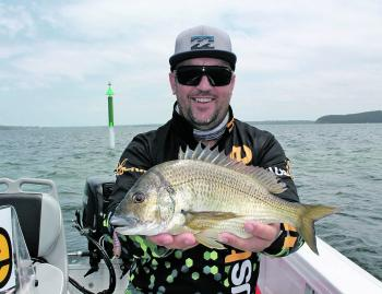 Local angler Brad Knight was doing well recently with some great bream catches. The fish were falling for his Austackle Ranger hardbody lures.