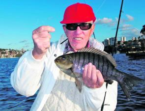 One of many happy anglers that are cracking into the great luderick fishing on offer this winter.