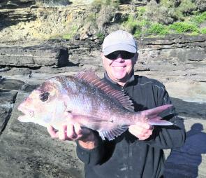 Snapper like this 3kg one from Ray Smith will be common off the rocks and on the inshore reefs this month.