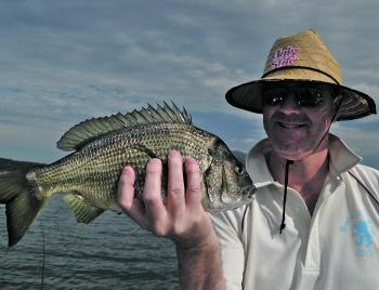 This stud bream was seen chasing prawns in the shallows and a well-placed bait was its undoing.