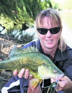 The author's better half, Sharon, with a beautiful golden perch she landed using one of the authors signature WD Short Striker spinnerbaits from Outlaw. Golden perch catch rates will drop off this month but by sticking to the afternoon sessions, you shoul