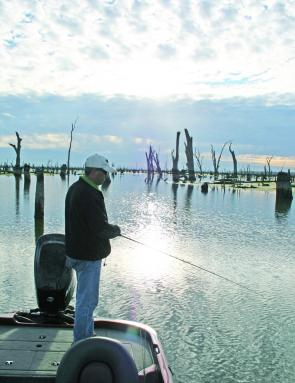 Casting lures around the snags –­ especially early in the morning or in the evening ­– is a pleasant and productive way to fish Lake Mulwala.