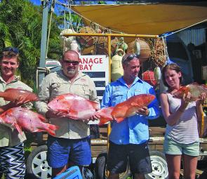 Need a reason to visit Stanage Bay? How about a good feed of red emperor, trout and other reef fish.
