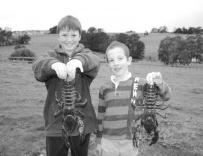 Ryan King (left) and Lach Auldist with a couple of nice freshwater crayfish from a West Gippsland stream. Now is a good time to target these prehistoric-looking creatures in this region.
