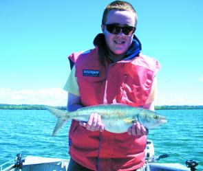 The author with a good size 5lb Australian salmon from Port Sorell.