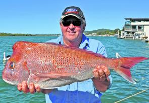 Rod McCarey from Point Arkright boated this quality snapper while on a Cougar One charter to the Barwon Banks.