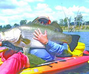 Mike Hardiker with a huge Awoonga barra caught from his kayak stealth machine.