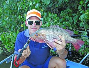 Steve Ward with a solid jack from the Nerang River. There's no shortage of jacks in February, especially on those hot afternoons.