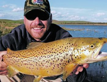 Huge brown trout on the prespawning runs in the Thredbo and Eucumbene Rivers offer anglers the best chance for the entire year to get a trophy fish or a trophy photograph.