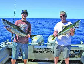 It's been a big year on for yellowtail kingfish. Photo courtesy Ocean Grove Charters.