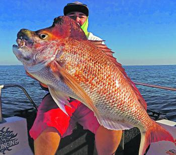 fishing monthly magazines going soft on big snapper
