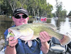 The author caught this cod in the Edward River at Moulamein with the peak-hour angling traffic in the background.